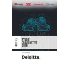 Studie Cloud Native 2020