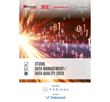 Studie Data Management /  Data Quality 2020